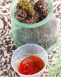 Варенье из сосновых шишек: 3 простых рецепта