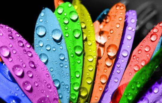 Психология цвета: в бизнесе, рекламе, какие цвета лучше использовать