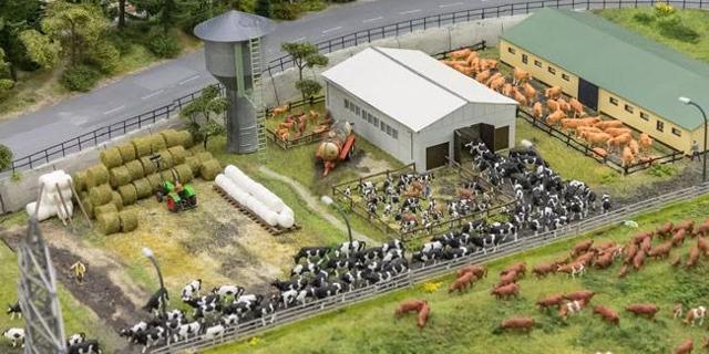 Как открыть фермерское хозяйство с нуля: с чего начать, что нужно, нюансы бизнеса
