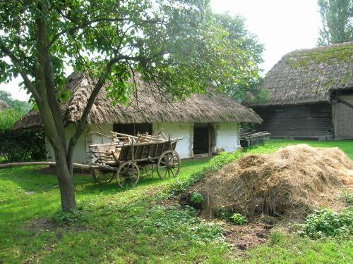 Бизнес идеи для деревни: ТОП-5 вариантов, которыми стоит заняться на селе