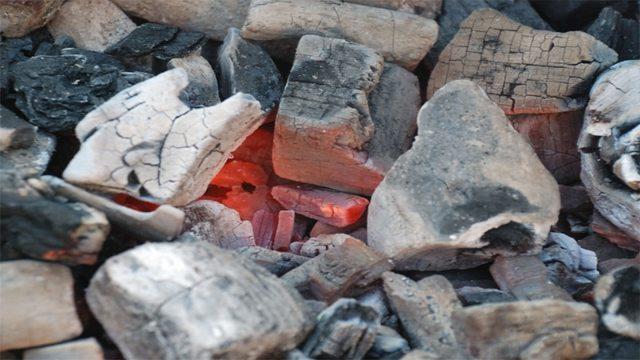 Производство древесного угля: оборудование (цена), технология, нюансы бизнеса