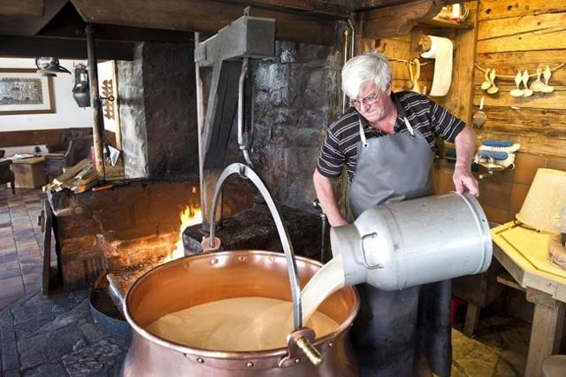 Производство сыра в домашних условиях как бизнес