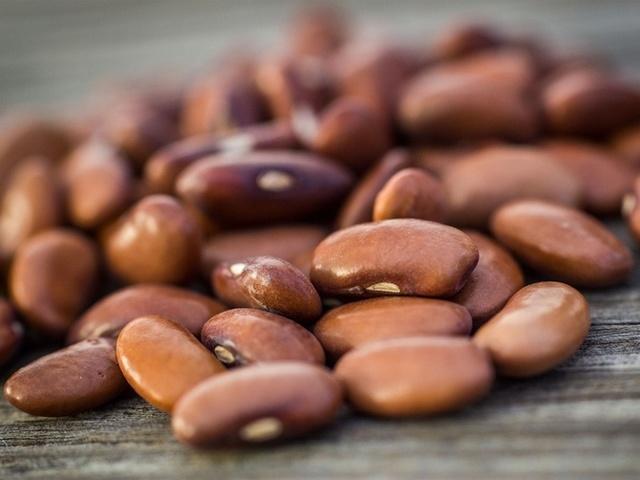 Выращивание стручковой фасоли в открытом грунте: технология, уход, секреты, лучшие сорта